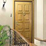 входная дверь 3