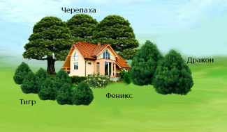Дом с зелеными насаждениями разной высоты